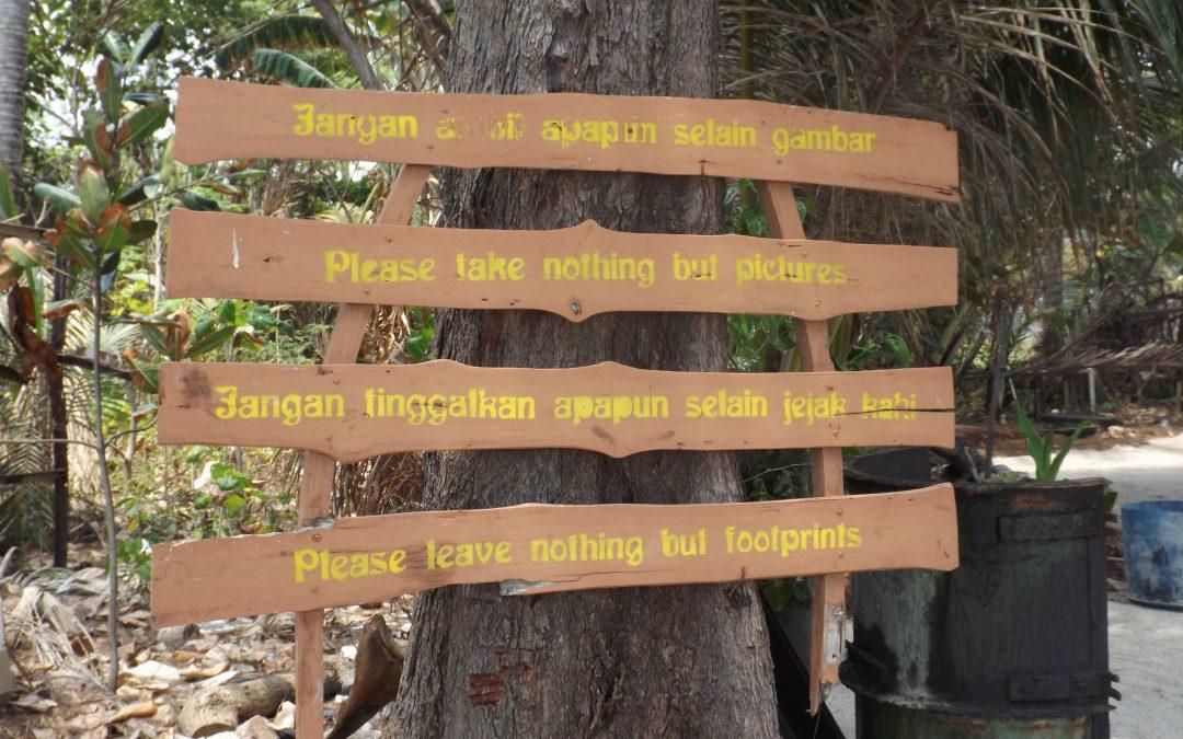 Eine Trauminsel namens Pulau Menjangan Kecil