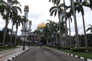 Palmenweg zu einem Tempel in Brunei