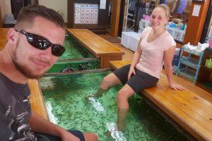 Fussbad mit Knabberfischen in Bangkok