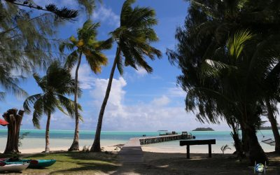 Palau in Mikronesien – Tipps und Kosten für das Inselparadies