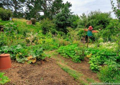 Der Gemüsegarten im Land der Hobbits wird täglich von Mitarbeitern gepflegt