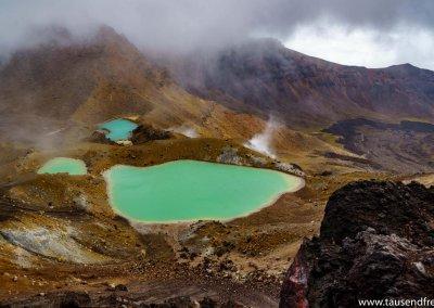 Oben auf dem Red Crater hast du eine geniale Aussicht auf die Emerald Lakes