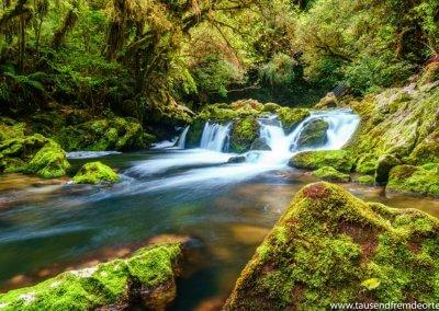 Riwaka Resurgence in der Nähe vom Abel Tasman NP