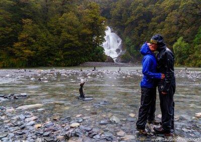 Ein nasser Tag an der Westküste der Südinsel