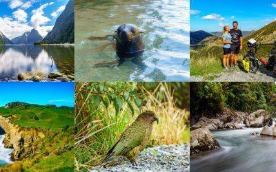 Fotoparade Neuseeland – Unsere schönsten Bilder