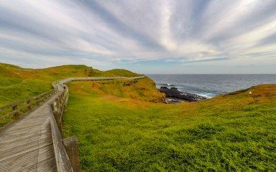 Phillip Island – die Insel der Pinguine