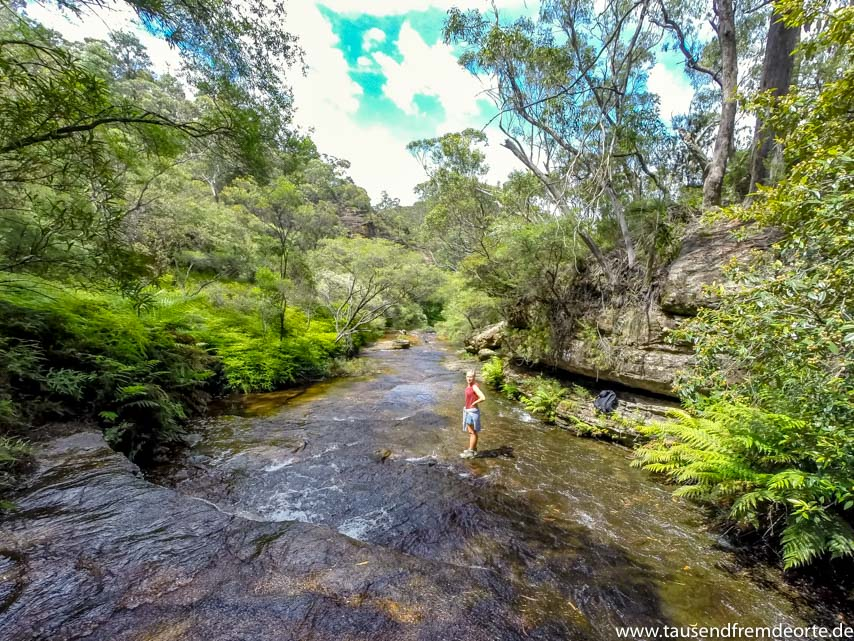 Fluss in den Blue Mountains