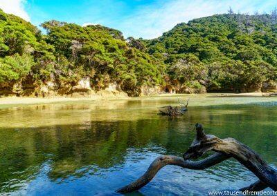 Bucht im Abel Tasman Nationalpark